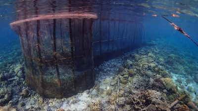 Devastating effects of fish fences in tropical waters
