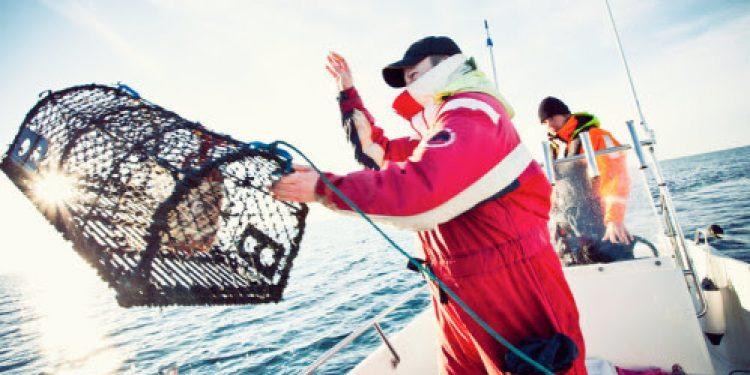 Shooting a lobster pot - @ Fiskerforum