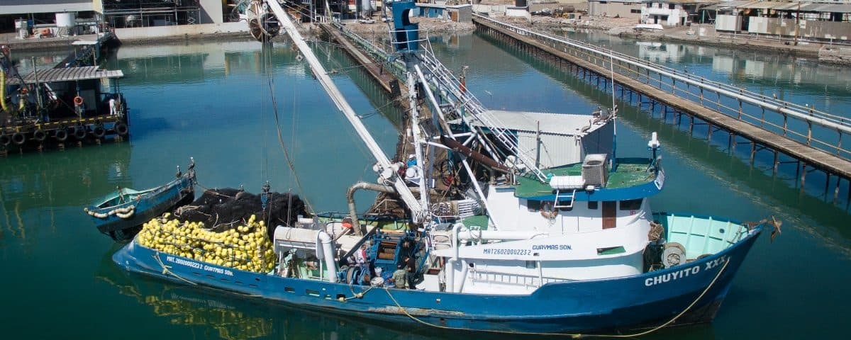 Read more about the article TH Company refits Mexican seiner