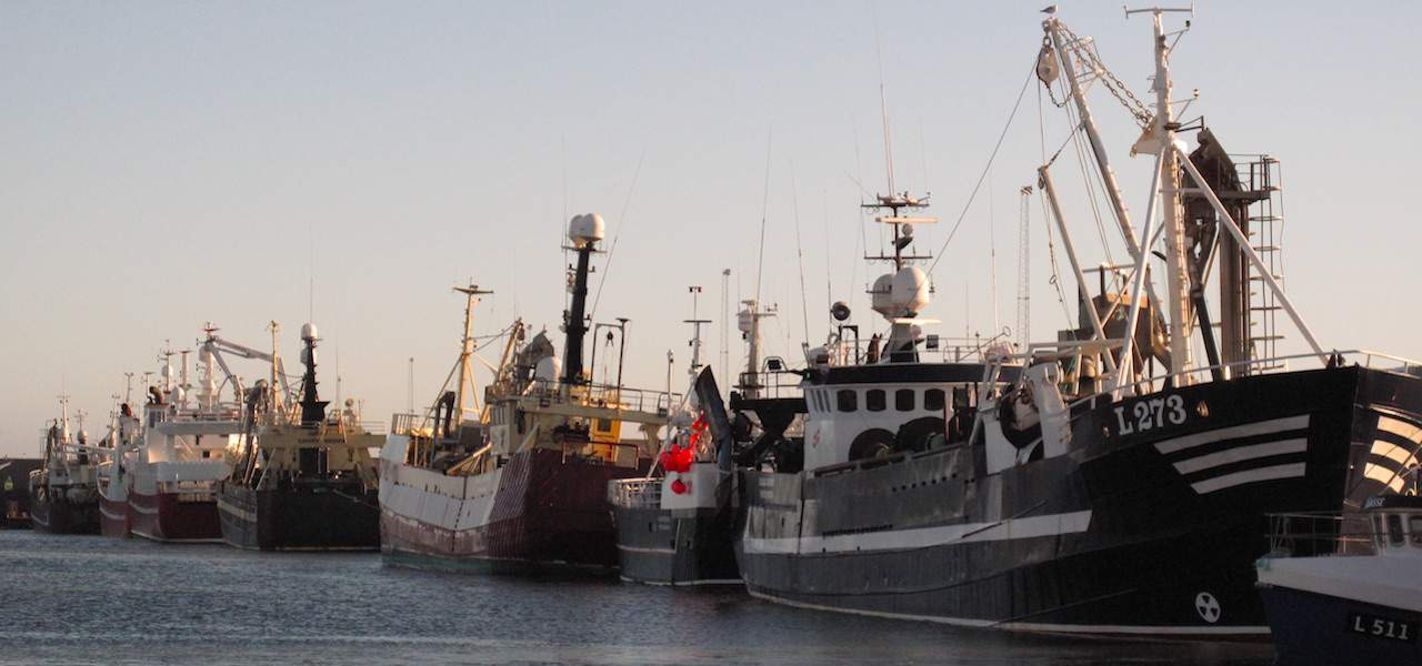 Coronavirus hits Danish fishing industry