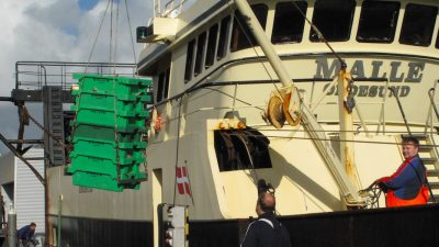 Largest multi-national fishery in the North Sea area gets MSC certificate