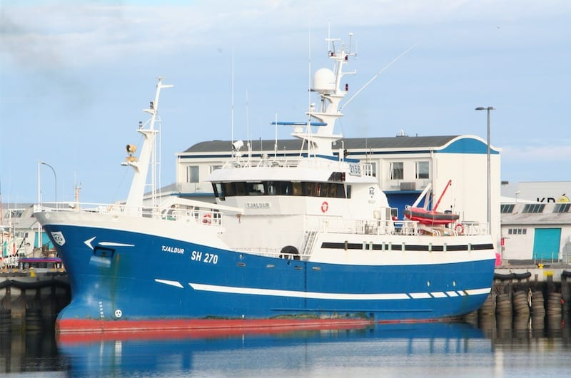 Read more about the article Iceland quota recommendations