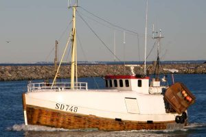 SD 748 –  Odderö – ©FiskerForum - Foto: ToAA