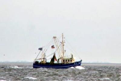SD 15 –  Hanseat – ©FiskerForum - Foto: ToHard