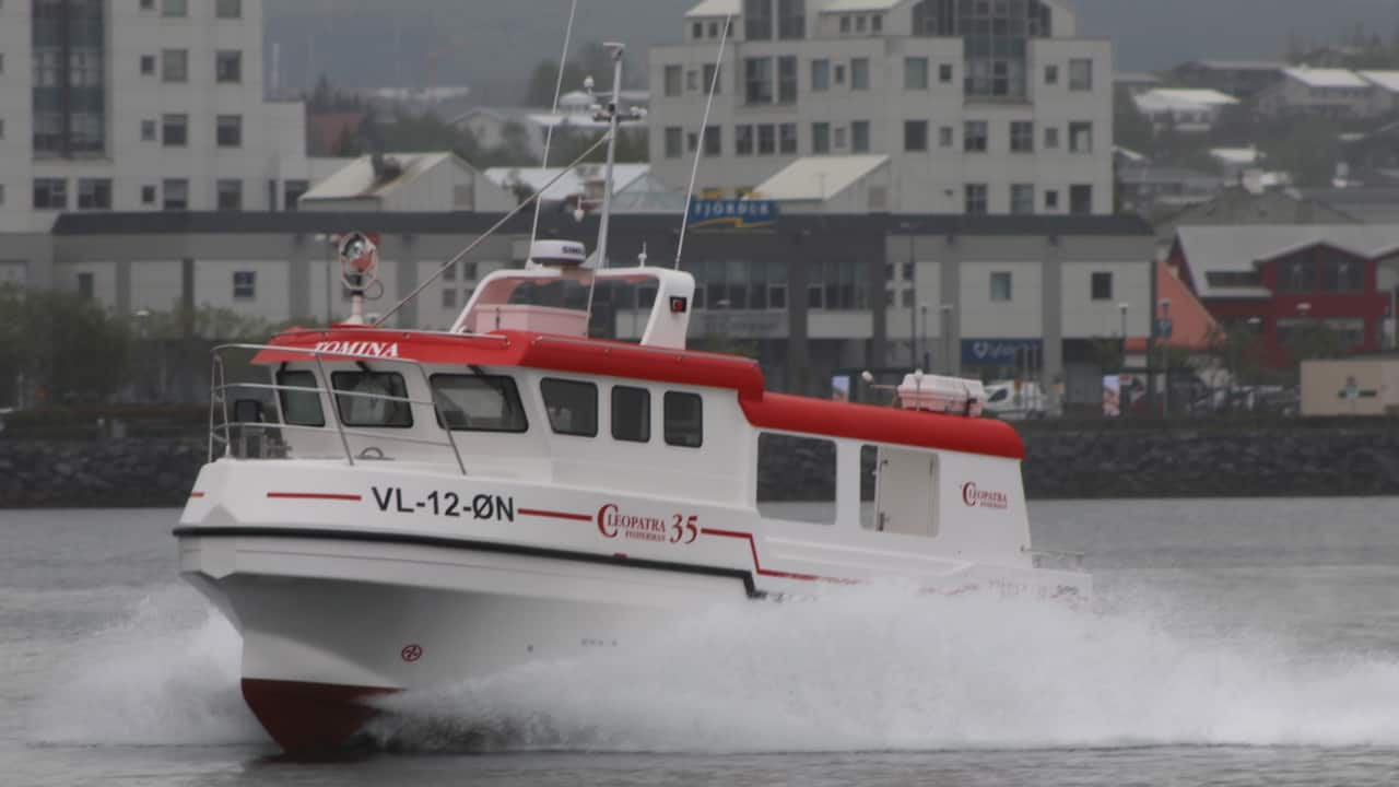 Read more about the article New Cleopatra fishing from Bergen