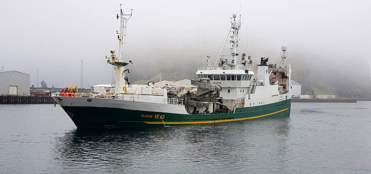 Westman Islands' successful herring season