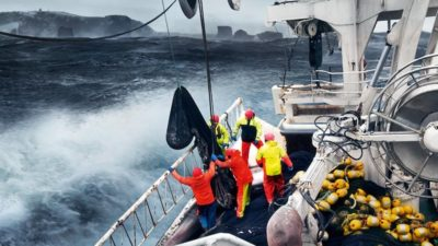 FISK Seafood acquires one-third stake in VSV