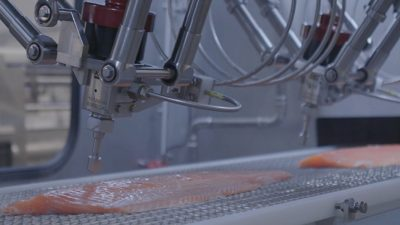 Valka unveils Water-Jet Cutter for pre-rigor salmon at SPG in Brussels