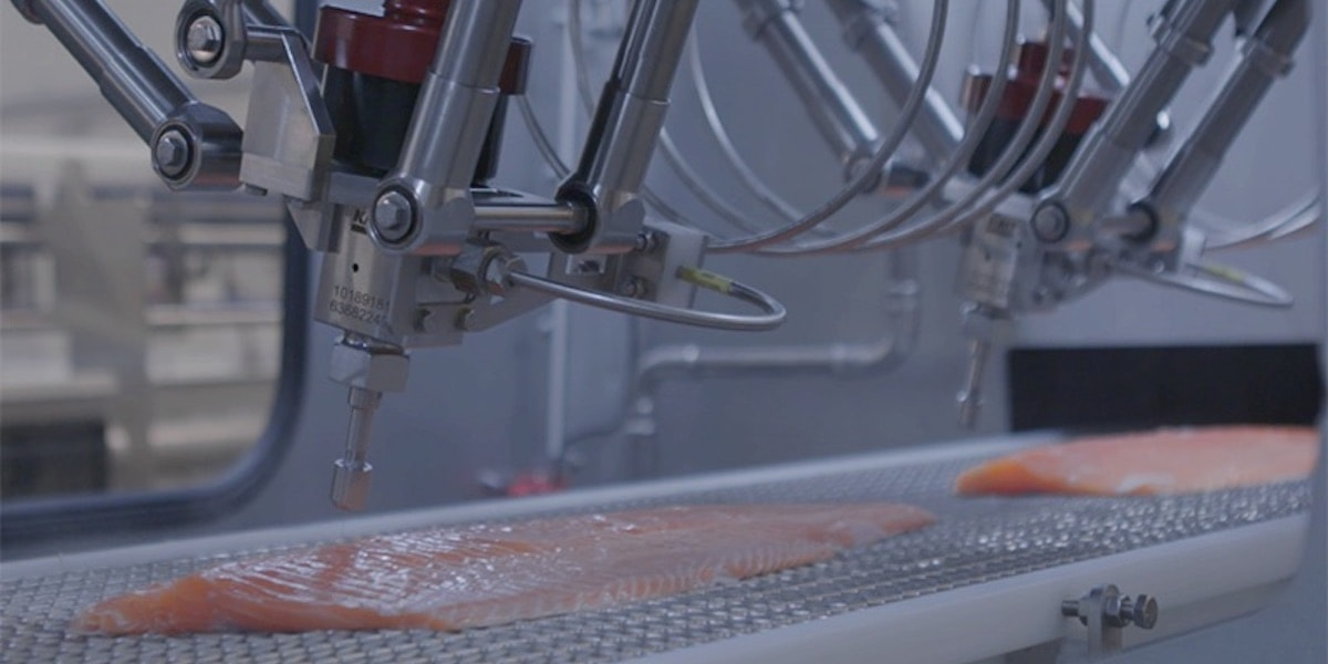 Valka unveils Water-Jet Cutter for pre-rigor salmon at SPG
