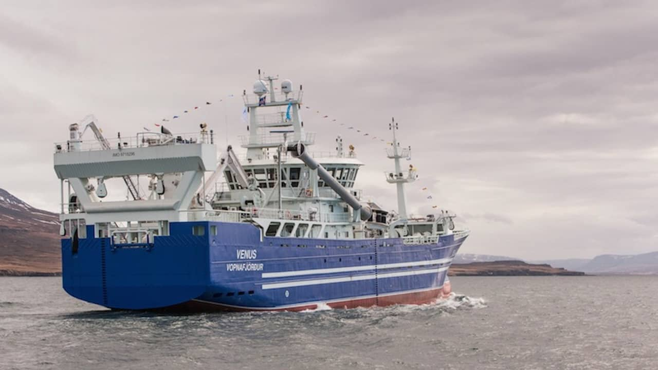 Capelin roe production underway at Akranes