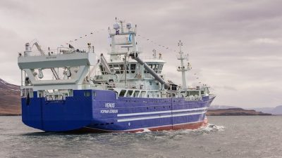 Iceland's mackerel fishery heads offshore