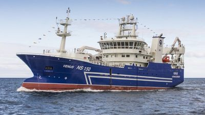 4000 tonnes of blue whiting landed at Vopnafjörður yesterday