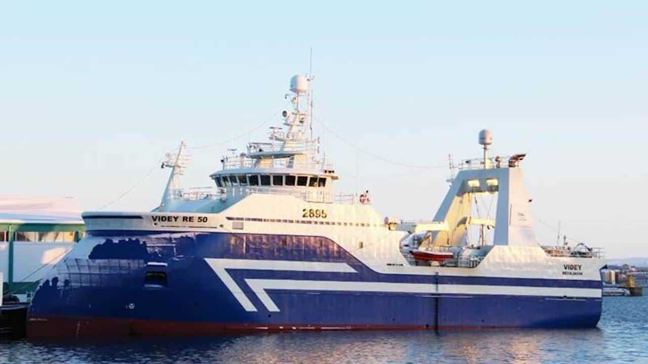 Read more about the article Where does all this haddock come from?