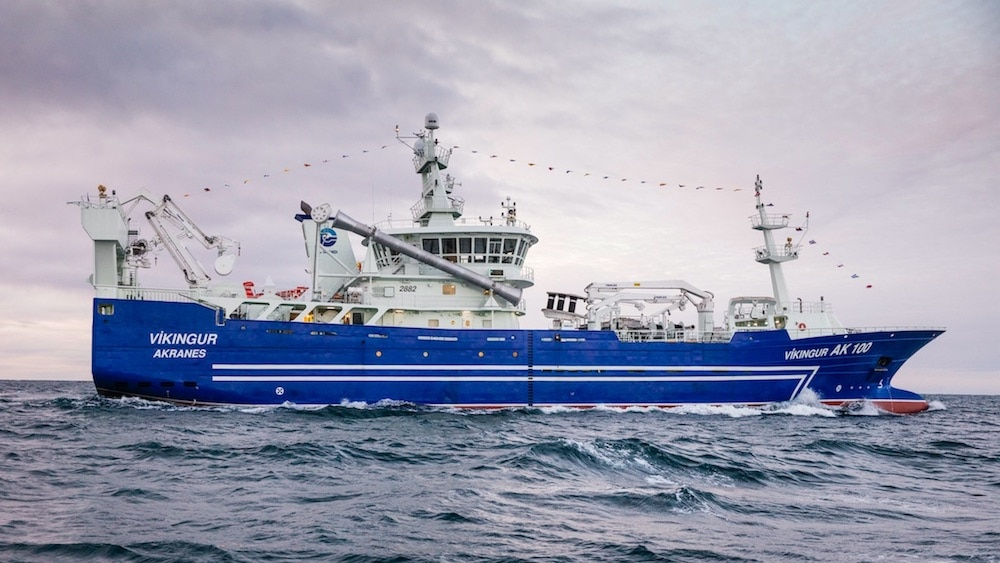 Slow fishing on dispersed blue whiting