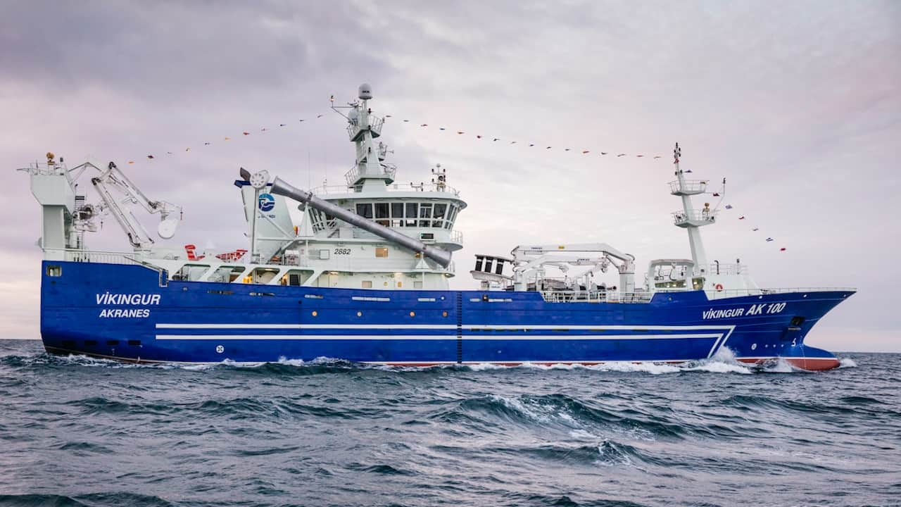 Read more about the article Víkingur's Gloria performs well on blue whiting