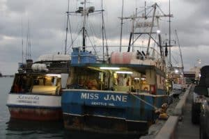 NMFS to analyse impacts of Western Pacific tuna longline fisheries