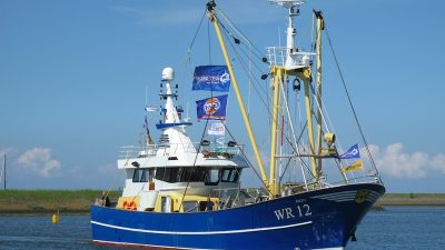 New shrimpers delivered in Den Oever