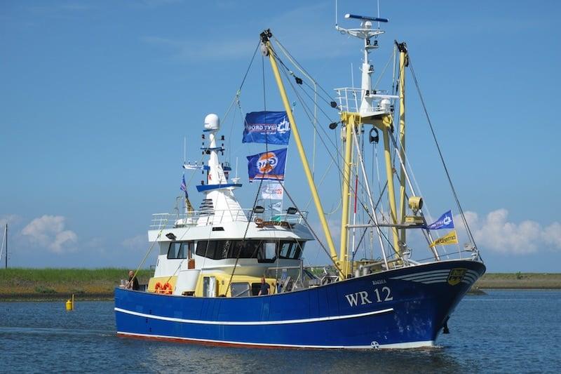 New shrimpers delivered in Den Oever