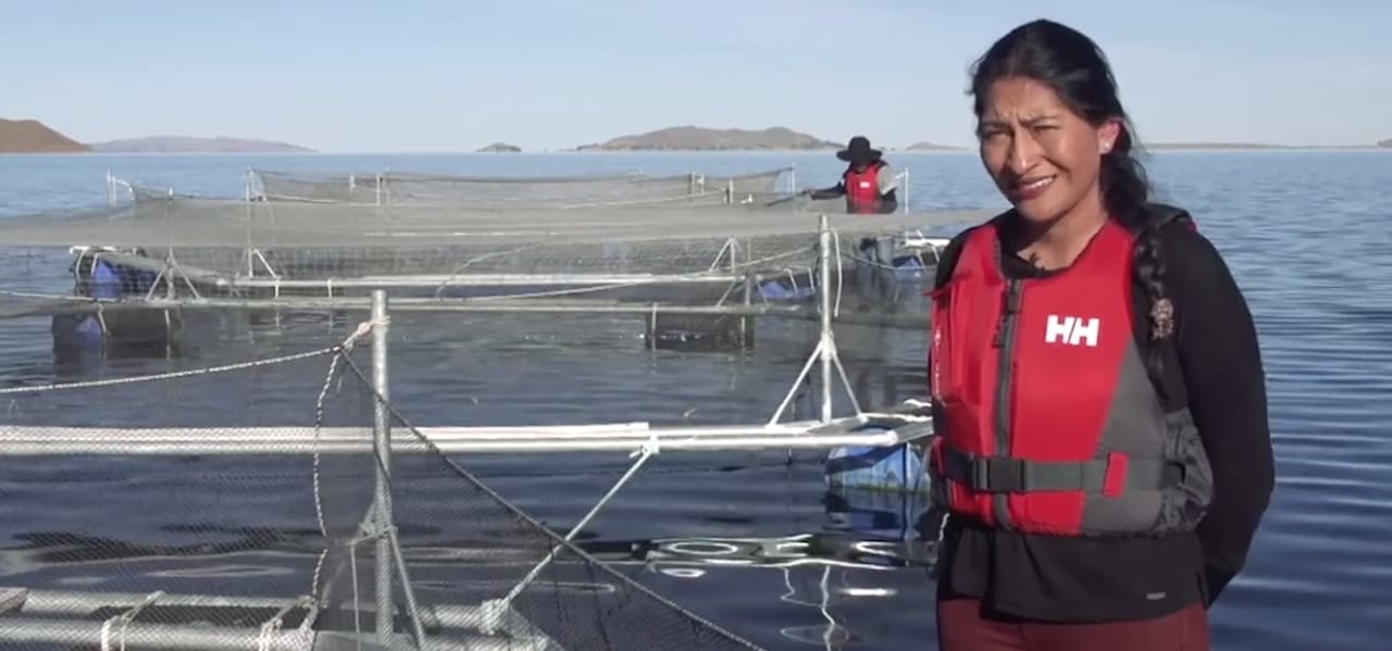 Read more about the article Women in Seafood video competition opens for the fourth time