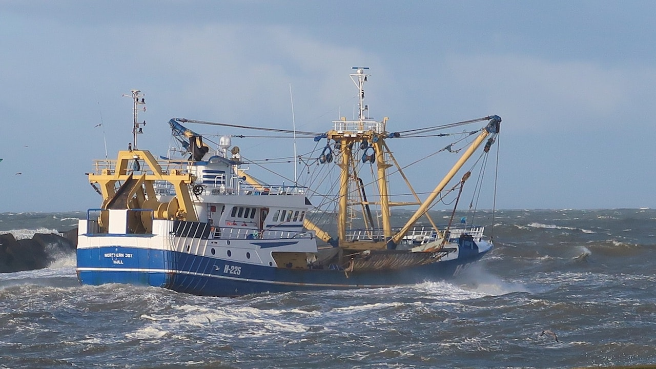 Dutch pulse trawlers switch to twin-rigging