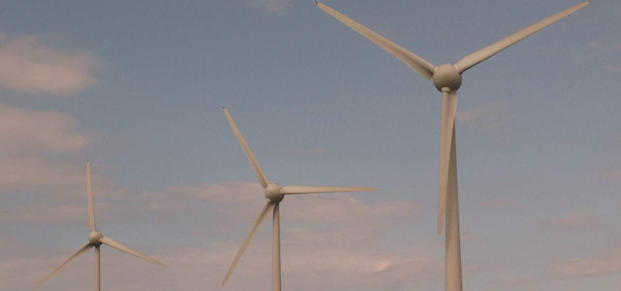 Read more about the article Blown away by offshore wind energy plans