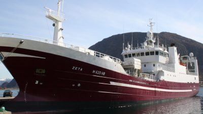 Norwegian exports: herring down, mackerel up