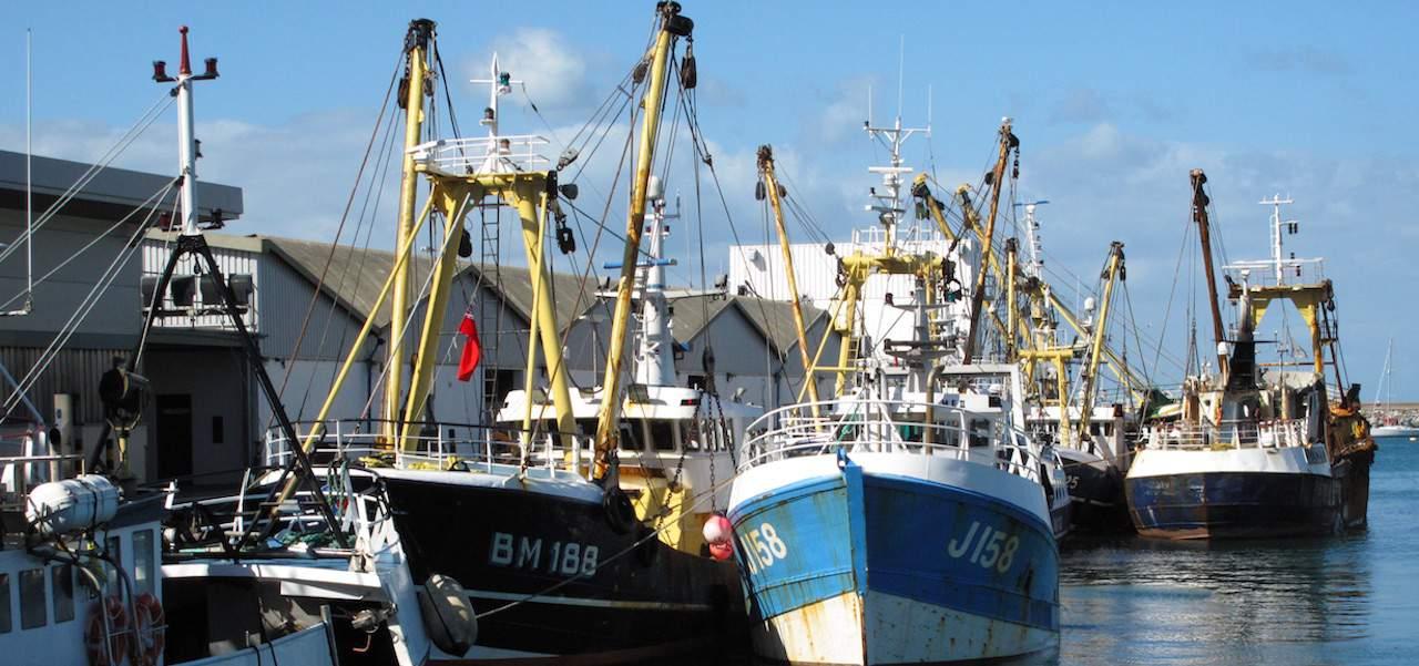 'Calm before the storm' report on UK fishing fleet