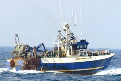 D 162 –  Ocean Harvester – ©FiskerForum - Foto: bones