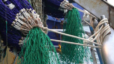Calls for project gear discards reduction initiative ideas