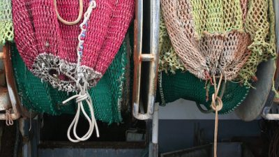 EU studies fishing world subsidies