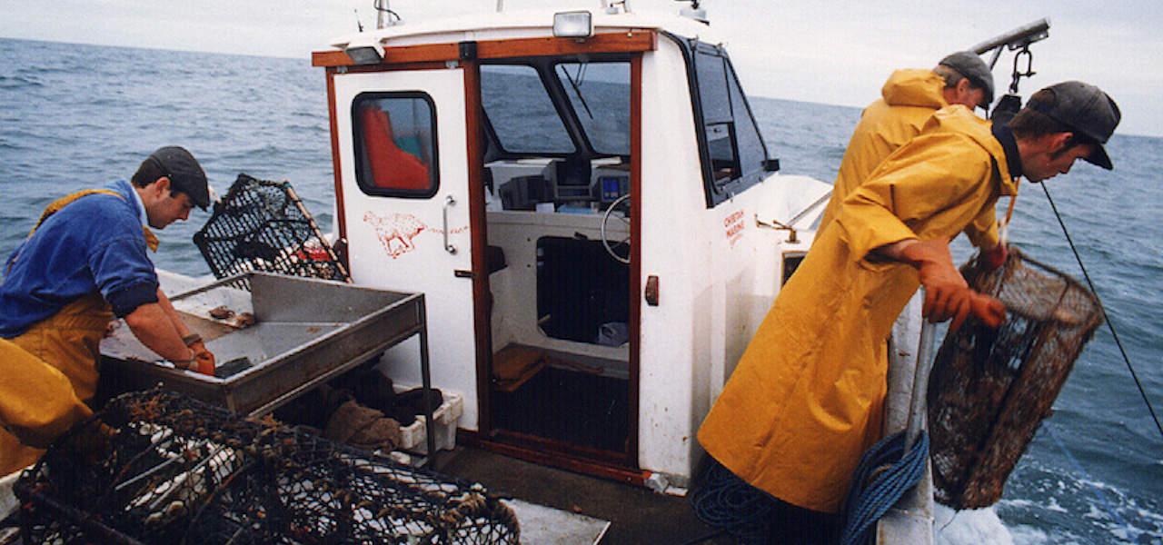 No-Fishing zones threatened for UK waters
