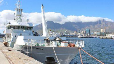 Survey studies trawling impacts