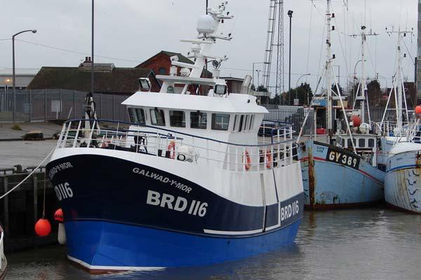BRD 116 –  GALWAD Y MOR – ©FiskerForum - Foto: fresh-herrings