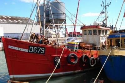 D 679 –  Franleon – ©FiskerForum - Foto: fresh-herrings