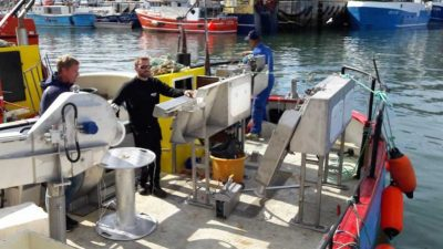 Mustad systems successful in Greenland