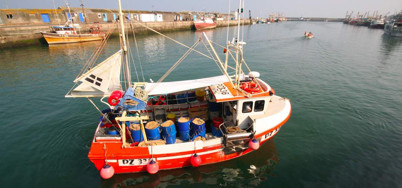 Active fishermen join inshore fisheries steering group
