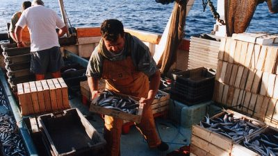 Action on Mediterranean and Black Sea small-scale fisheries
