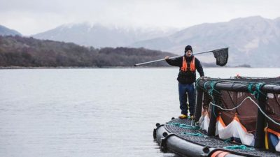 Scottish salmon farmers lead the way with transparent reporting