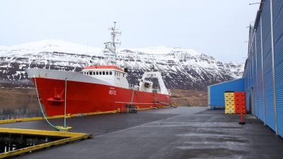 Tough year for groundfish production