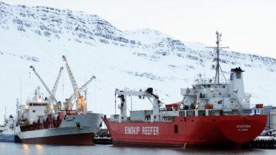 55,000 tonnes through cold store