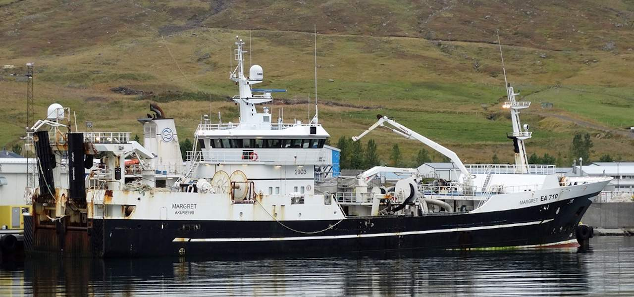 1150 tonnes of herring in two tows