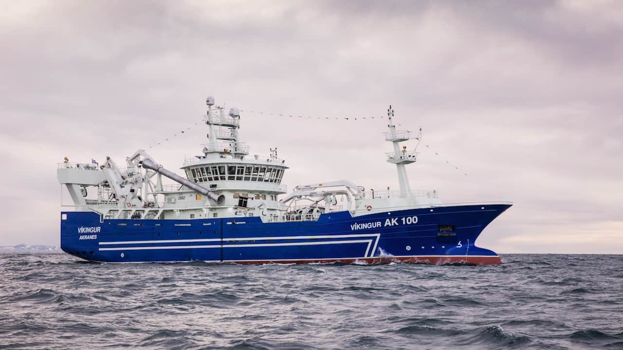 Read more about the article Icelandic capelin quota recommendations