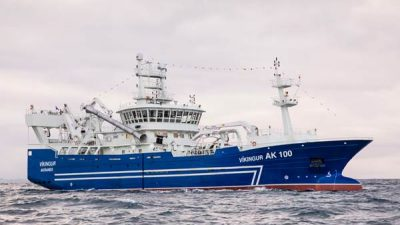 Blue whiting shifts west of the Faroes